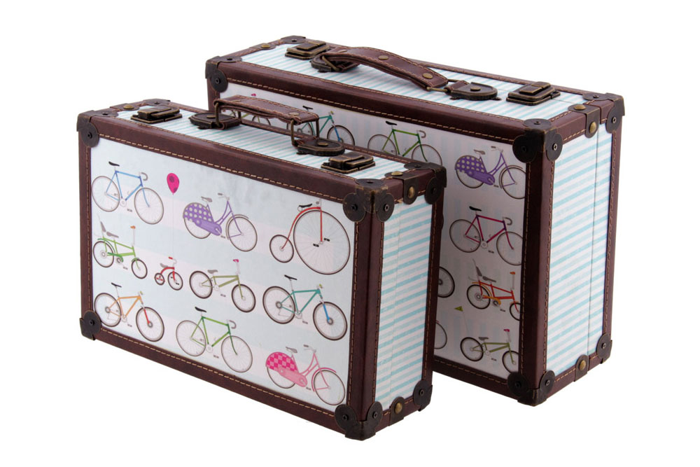 Set of Two Bicycle Cases