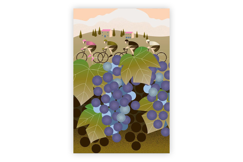 Giro D'Italia: Vineyard Cycling Print by Eleanor Grosch