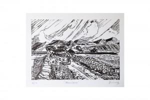prod-print-dave-flitcroft-green-lane-print-1-wr