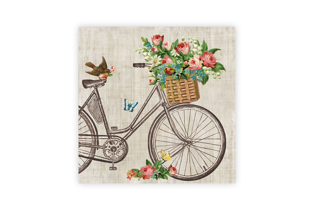 Robin on a Bicycle Napkins