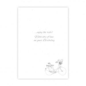 Wonderful Sister Bicycle Birthday Card