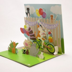 Cat on a Bicycle Pop Up Greeting Card