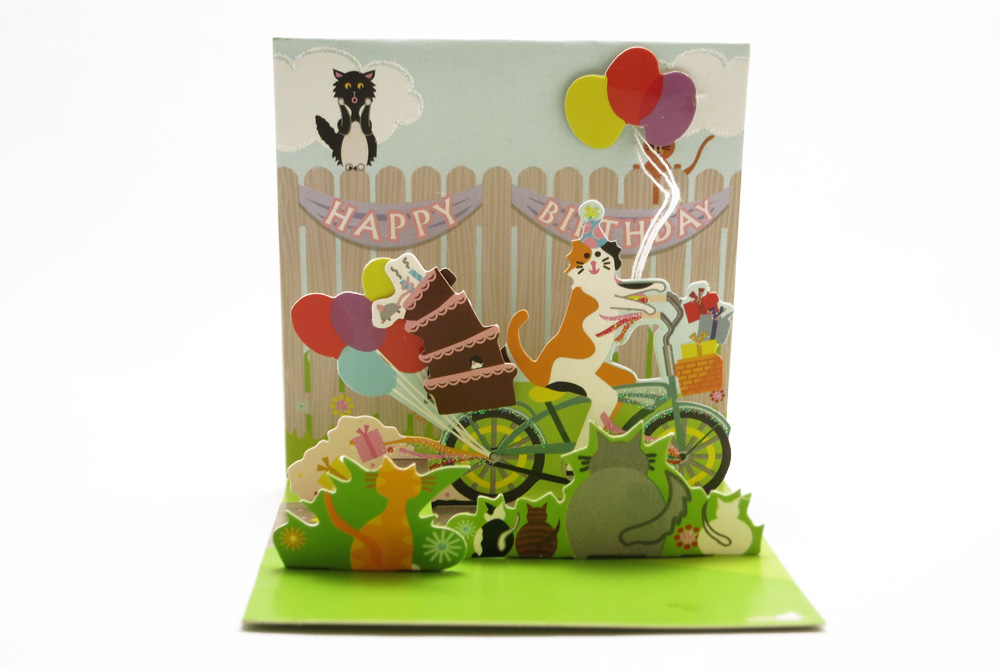 Mini Cat on a Bicycle Pop Up Greeting Card