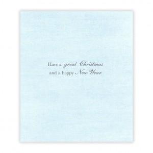 Wonderful Son Bicycle Christmas Card