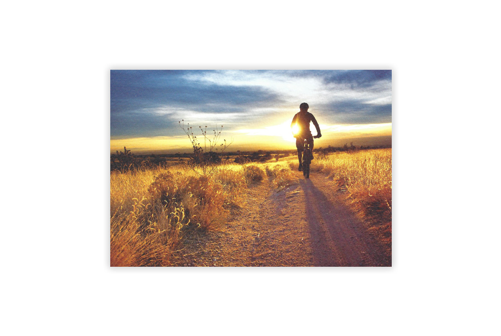 Sunset Rider Bicycle Greeting Card