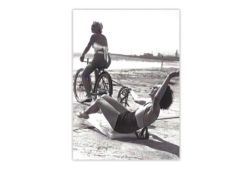 Go Wild Bicycle Greeting Card