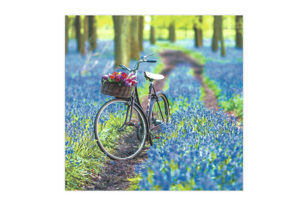 Bluebells Bicycle Greeting Card