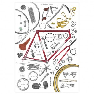 Anatomy of a Bike Print by David Sparshott