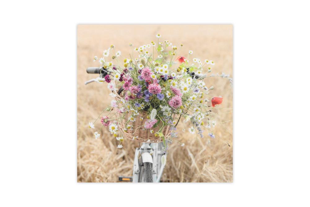 Bicycle Basket of Wild Flowers Bicycle Greeting Card