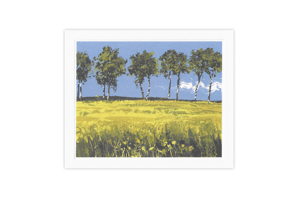 Cyclist, Ariege II Bicycle Greeting Card by Andy Lovell