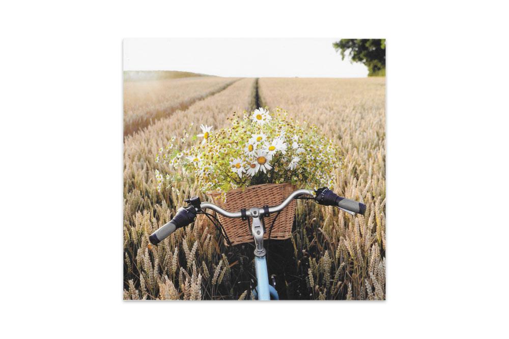 Basket of Cornflowers Bicycle Birthday Card