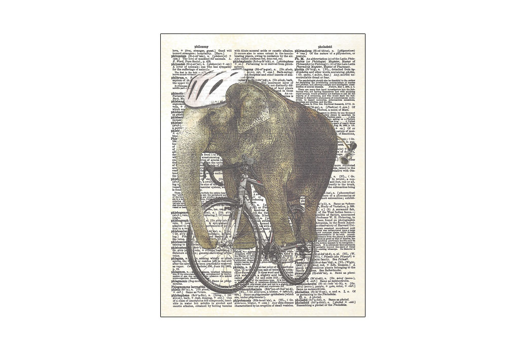 Trunk Armstrong Bicycle Postcard